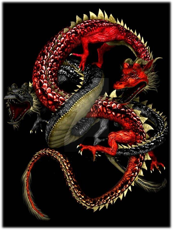17 best images about dragones on pinterest dragon art