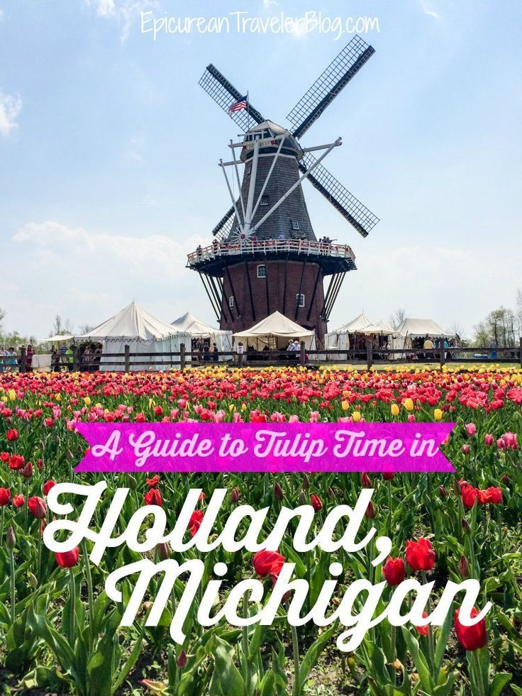 Where to eat and see tulips during the Tulip Time Festival in Holland, Michigan | EpicureanTravelerBlog.com