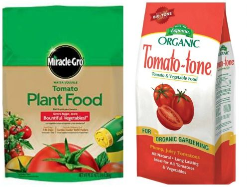 Kinds Of Tomato Fertilizer What Nutrients Tomatoes Need 400 x 300