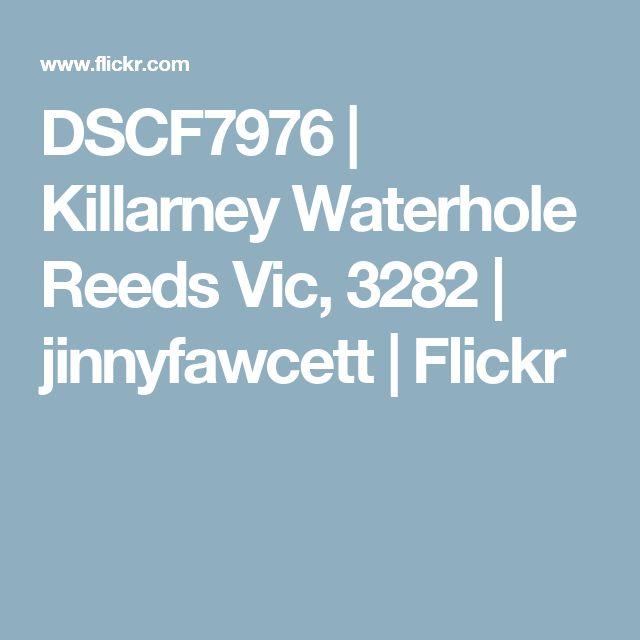 DSCF7976   Killarney Waterhole Reeds Vic, 3282   jinnyfawcett   Flickr
