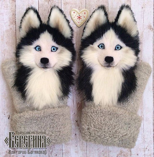 WEBSTA @ vikki.bog - Больше никаких визиток, всё по-взрослому)))) рукавички с хаски, выполнены на заказ) Handmade mittens with husky) #handmademittens #mittens #hmd #dog #husky #handcraft #doglovers #instadog #ooak #acsessories #spb #moscow #pskov  #follow #хаски #хендмейд #валяниеизшерсти #смешаннаятехника #ручнаяработа #ааторскаяработа #рукавички #варежки #хочувhmd #звероварежки #фелтинг #собака #хаски #лайка #МастерскаяБерегиня #ВикторияБогакова