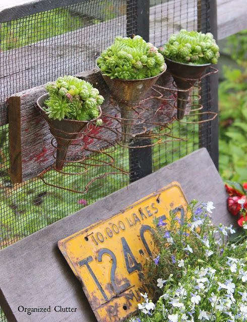 Spring oilcan succulent planters / part of Garden Junk Tour by Organized Clutter, featured on Funky Junk Interiors