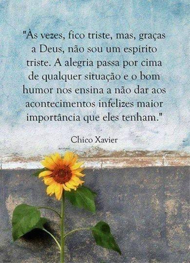 ✪sabedoria - Chico Xavier