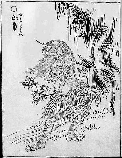 SekienYamawarawa