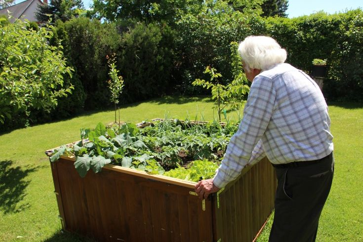 A magaságyban minden növény megtalálja kedvező életfeltételeit, tehát a termelőnek kell eldöntenie, hogy mit kíván termeszteni.