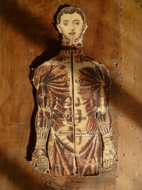 Vintage French Medical Anatomy Fold Out Doll Diagram Chart of The Human Body Skeleton