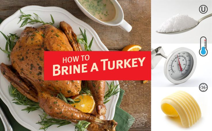 Learn how to prepare turkey brine for your Thanksgiving or Christmas feast. We have 8 key tips plus several recipes to get you ready for the holidays.