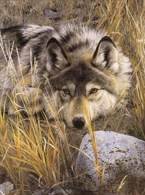 Carl Brenders --  One of my all time favorite wolf prints - just beautiful!