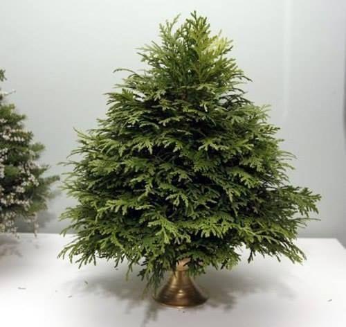 елка из веток и флористической губки своими руками