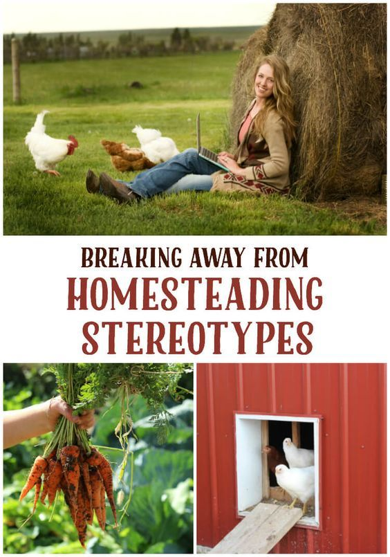 On homesteading stereotypes and such homesteads for Modern homesteading