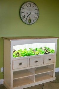 I love the idea of fresh lettuce and herbs all year long! And out of that cute hutch! Yes please!