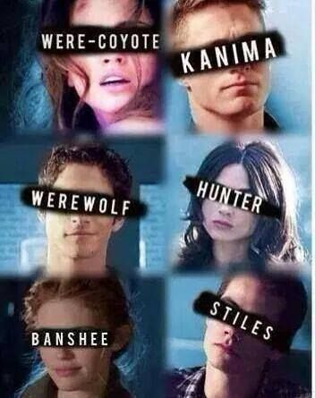 I love this! It is like: O sure this are the were-coyote, the kanima, the werewolf, the hunter, the banshee and the Stiles.. duhhhh!!!!!!