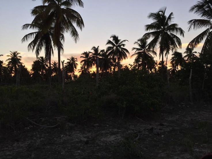 #Barbuda #Antigua and Barbuda