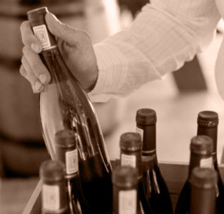 http://www.yourwinecellar.biz/ if you are looking online wine store then our company provide  you the best wine at affordable price  and we have also provide wine delivery.To know more: http://www.yourwinecellar.biz/