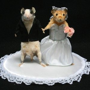 taxidermy mouse wedding cake topper 17 best images about mice on needle 20767