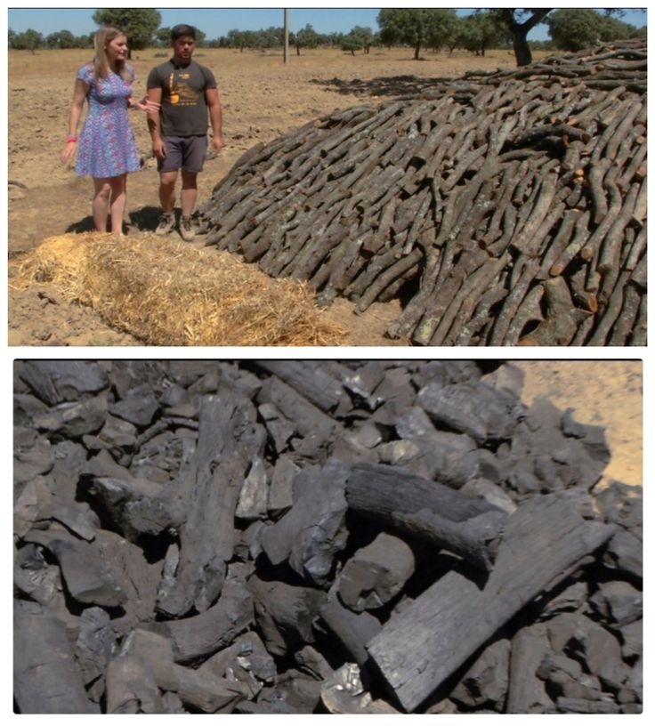 Carbón vegetal. La 1 de TVE