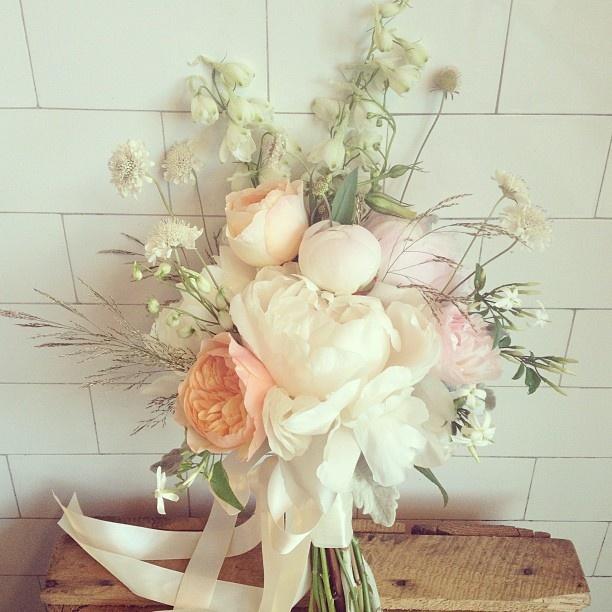 Tilly - @poppies_flowers- #webstagram
