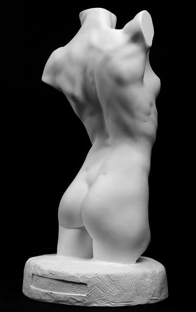 Female Torso Art Reference Cast by Philippe Faraut