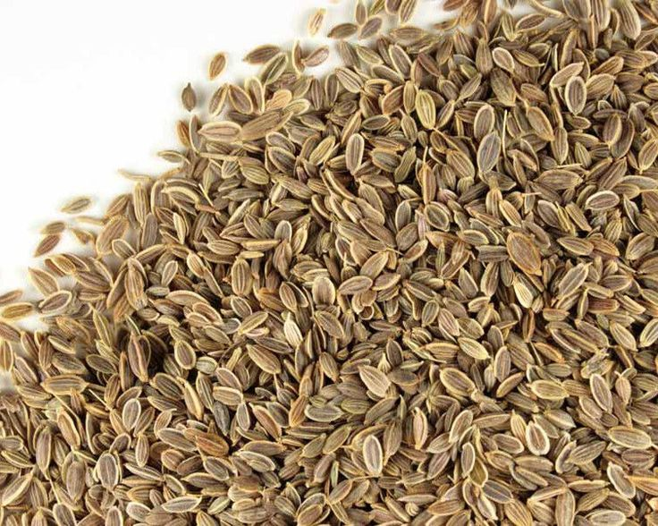 Organic Dill  - Bio  seeds Pack 100gr  #Unbranded