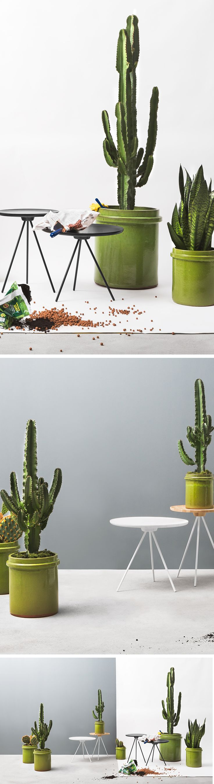 We don't expect you to bring the garden party inside, but use your imagination – get a little wild and let the unusual texture and organic shape of cacti take centre stage. Opposites attract, and that's why we love chaotic greenery with Key's clean, laid-back elegance – a sharp, characterful combination for any home. Key Tables designed by GamFratesi.