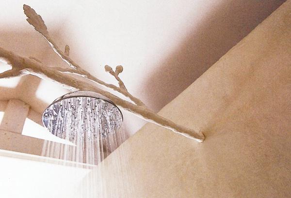 ok: Showers, Washed Cottage, Shower Heads, House Ideas, Branch Shower, Cool Ideas, Bathroom Ideas, Haute Design