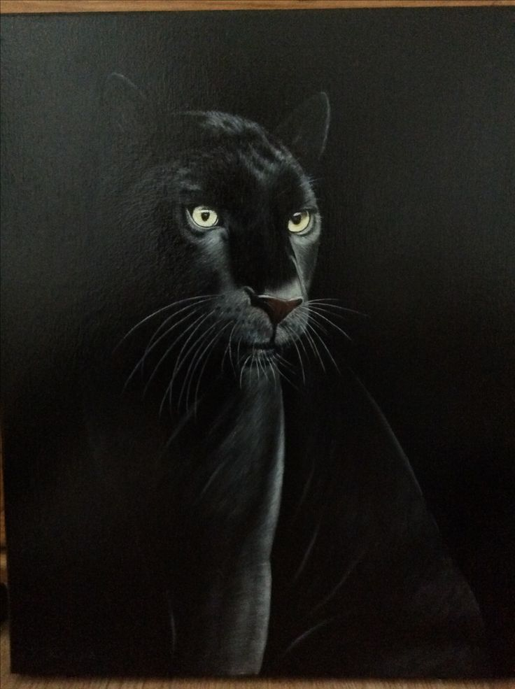The Black Panther. Oil paints on canvas. 41x51cm. By J.Stamp. Gateshead Artist.  £250.