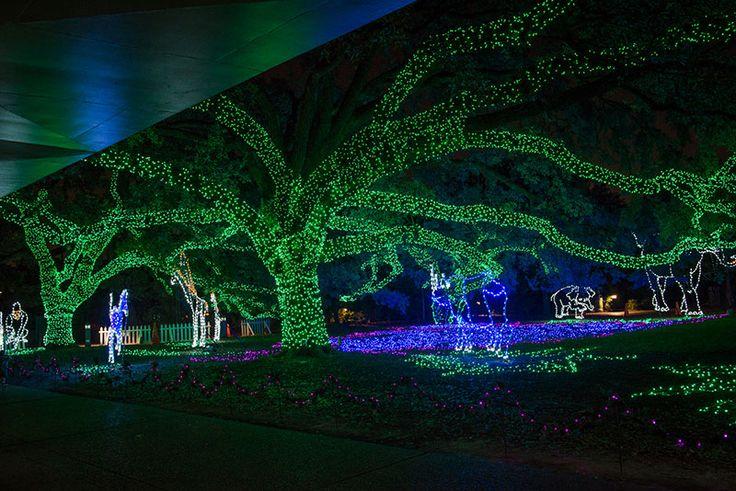 Zoo lights at Houston Zoo