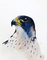 Resultado de imagen para talla en madera de halcones marinos