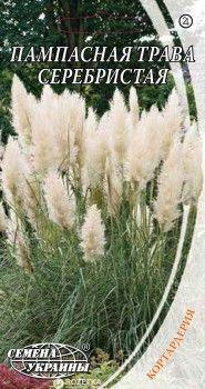 Пампасная трава Гарденс Срібляста 0.1 г (Насіння України)