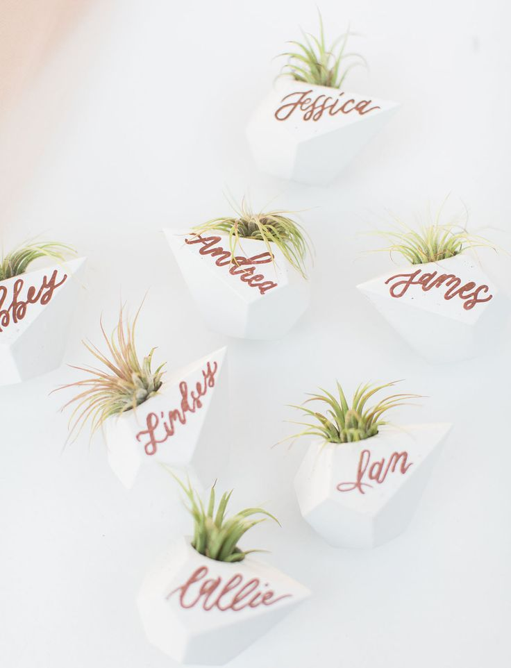 """air-plant name """"cards""""  - geometric object vases with copper calligraphy script"""