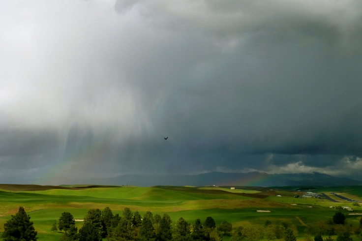 When a storm passes through the Palouse, you're treated to views like this. Go Cougs!
