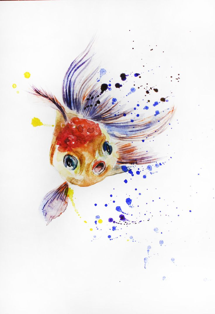 216 best watercolor images on pinterest watercolors for Original koi fish