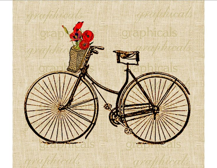 Vintage bicycle Basket Orange Poppies digital download image for transfer to fabric decoupage paper pillows burlap No. 586. $1.00, via Etsy.