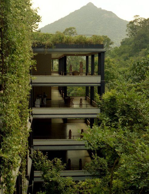 Kandalama Hotel @ Sri Lanka: Green Building, Srilanka, Trees Houses, Jungle, Interiors Design, Sri Lanka, Hotels Exterior, Geoffrey Bawa, Kandalama Hotels