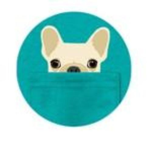 Peek a Boo Dog/Cat PopSocket | Dog cat, Popsockets, Dogs