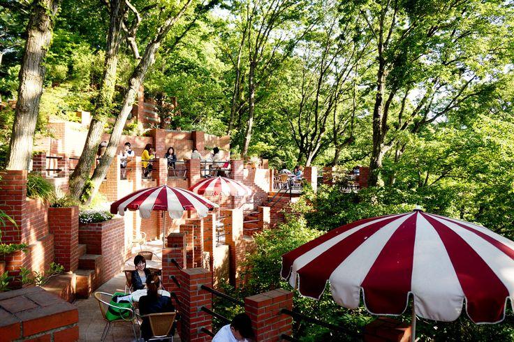 ラピュタの世界が舞い降りたような天空のカフェ。鎌倉『樹ガーデン』の素敵すぎる歴史 | SELECTY