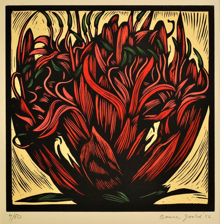 Bruce Goold - Gymea lily