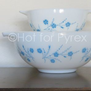 Dianthus Pyrex