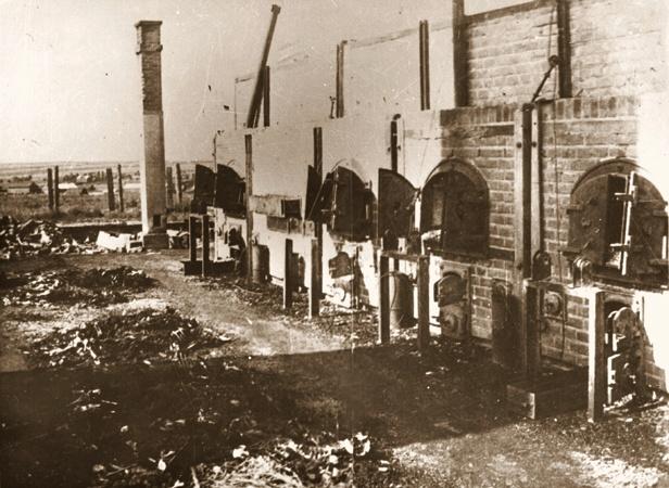 "The major ""Death Camps"" - Belzec, Chelmno, Majdanek ..."
