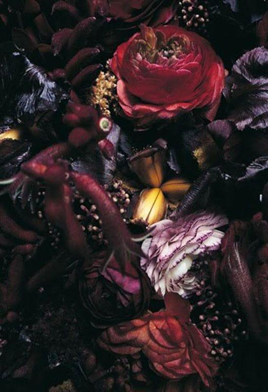 mélange de couleurs et de fleurs d'automne autumn nature fleur florale mottons pattern inspiration jaune bordeaux violine rose ancien