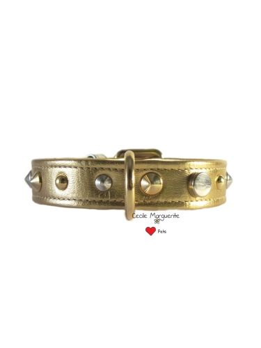 Collare per Cani in Pelle Morbida con Borchie di forme diverse. Soft Leather Dog Collar with different shape Studs.#cmlovepets #cutedogs #dogaccessories #luxurypet #animallovers #puppy #pets #petlovers #petslove #petslover #doglove #doglovers #accessoripercani #accessorilussopercani #petsaccessories #petsaccessory #cani #cane #dog #dogs #luxurydogaccessories #modacani #lussocani #leathercollar #collaricani #madeinitaly #studsdogcollar #studsdogcollars #collareborchie #collariborchie