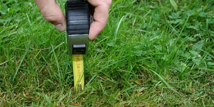 Measuring and ordering your instant turf