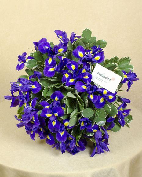 Buchet cu irisi. Irises bouquet