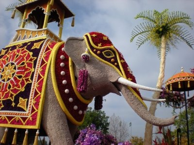 Elephant float in Rose Bowl Parade