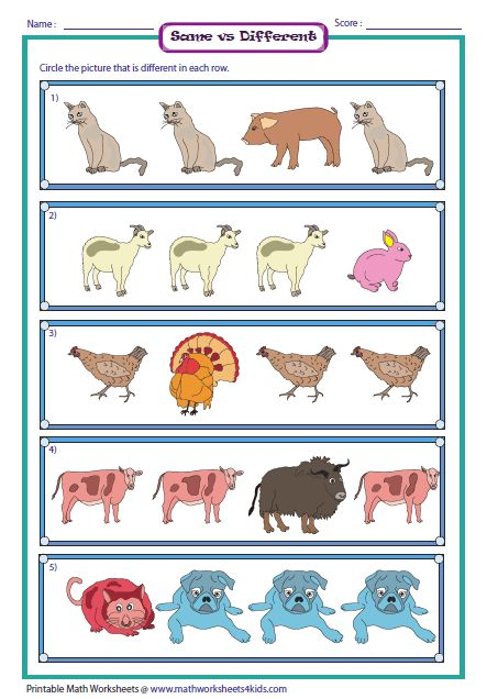worksheet for same and different - Google Search