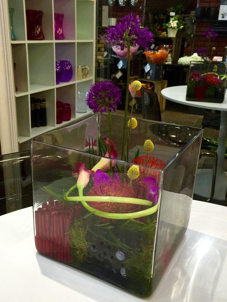 XXL glass cube modern internal design