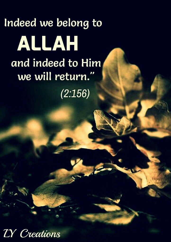 Indeed we belong to Allah and indeed to Him we will return.
