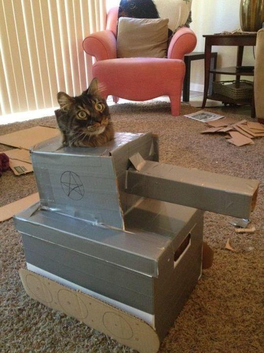 """""""Prepurr for battle!"""" Photo/caption via 4chan"""