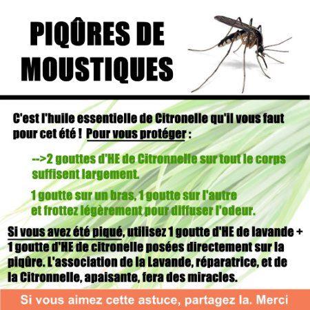 Découvrez mes huiles essentielles pour cet été. Bronzage, coup de soleil, brûlure, plaies, moustiques, .. n'oubliez pas vos huiles essentielles !