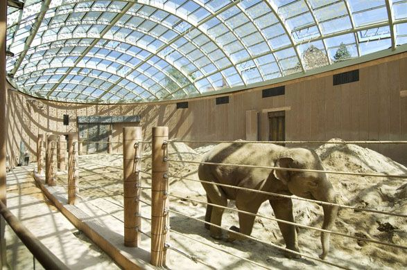 Copenhagen Zoo Elephant House. Architect, Foster + Partners; Structural and MEP engineer, Buro Happold.